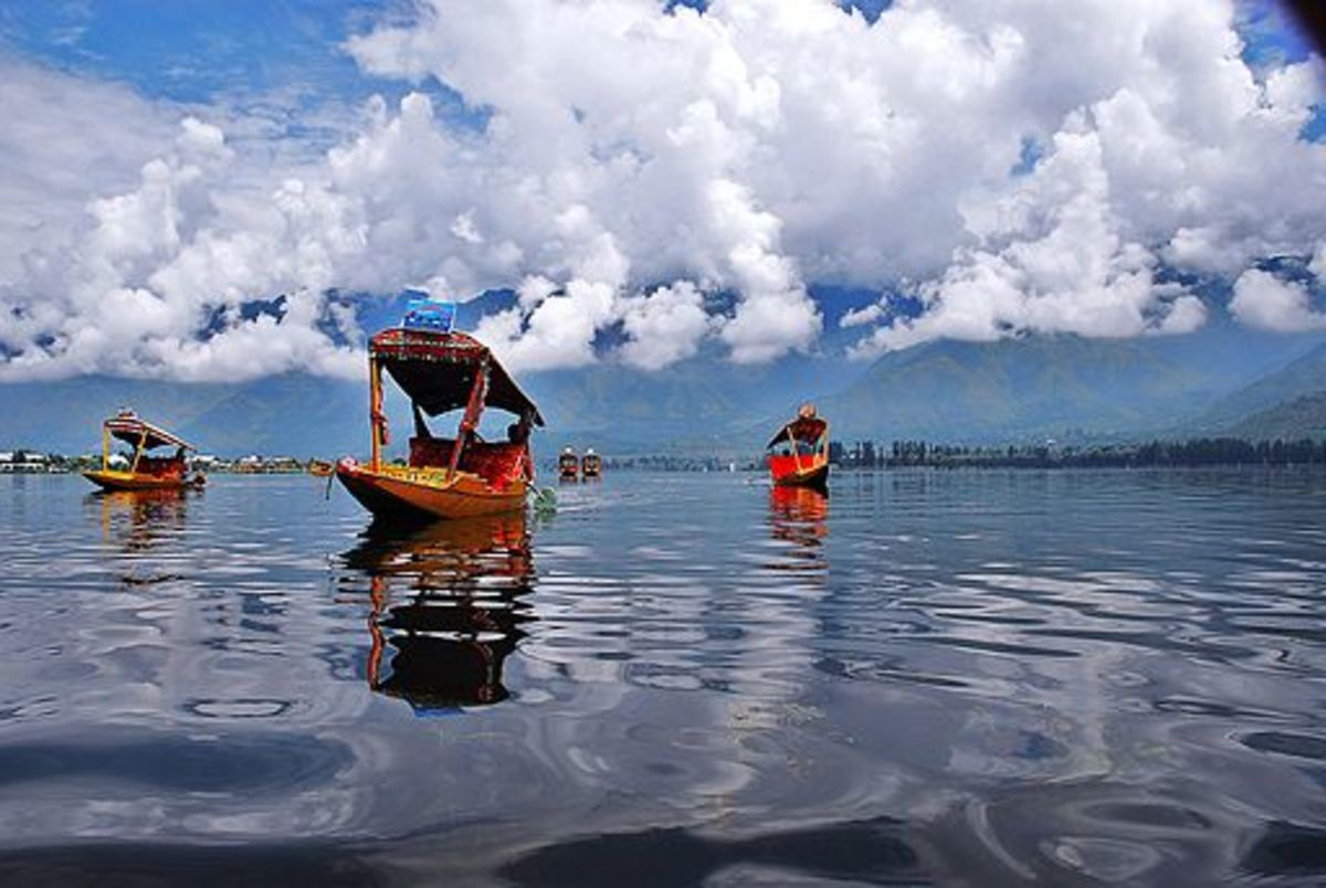 Floating Shikara in Dal Lake, Srinagar