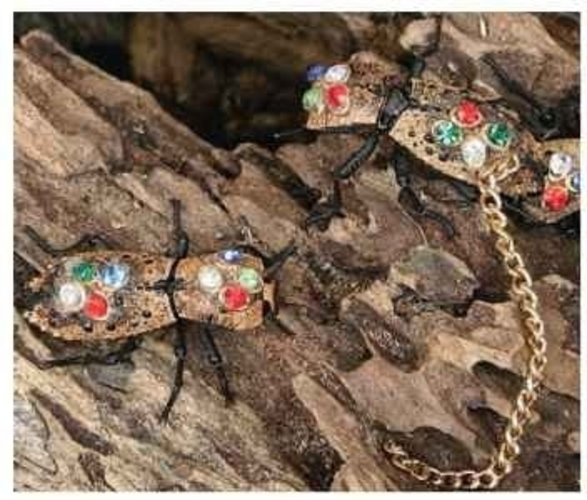 In this photo are living death watch beetles decorated as jewerly for sale in old Mexico. Usually sold near the Day of the Dead Ceromonies.