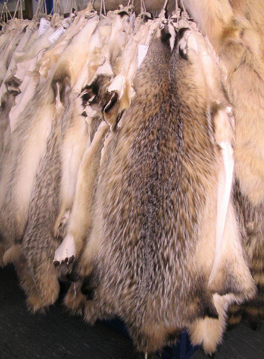 Badger skins