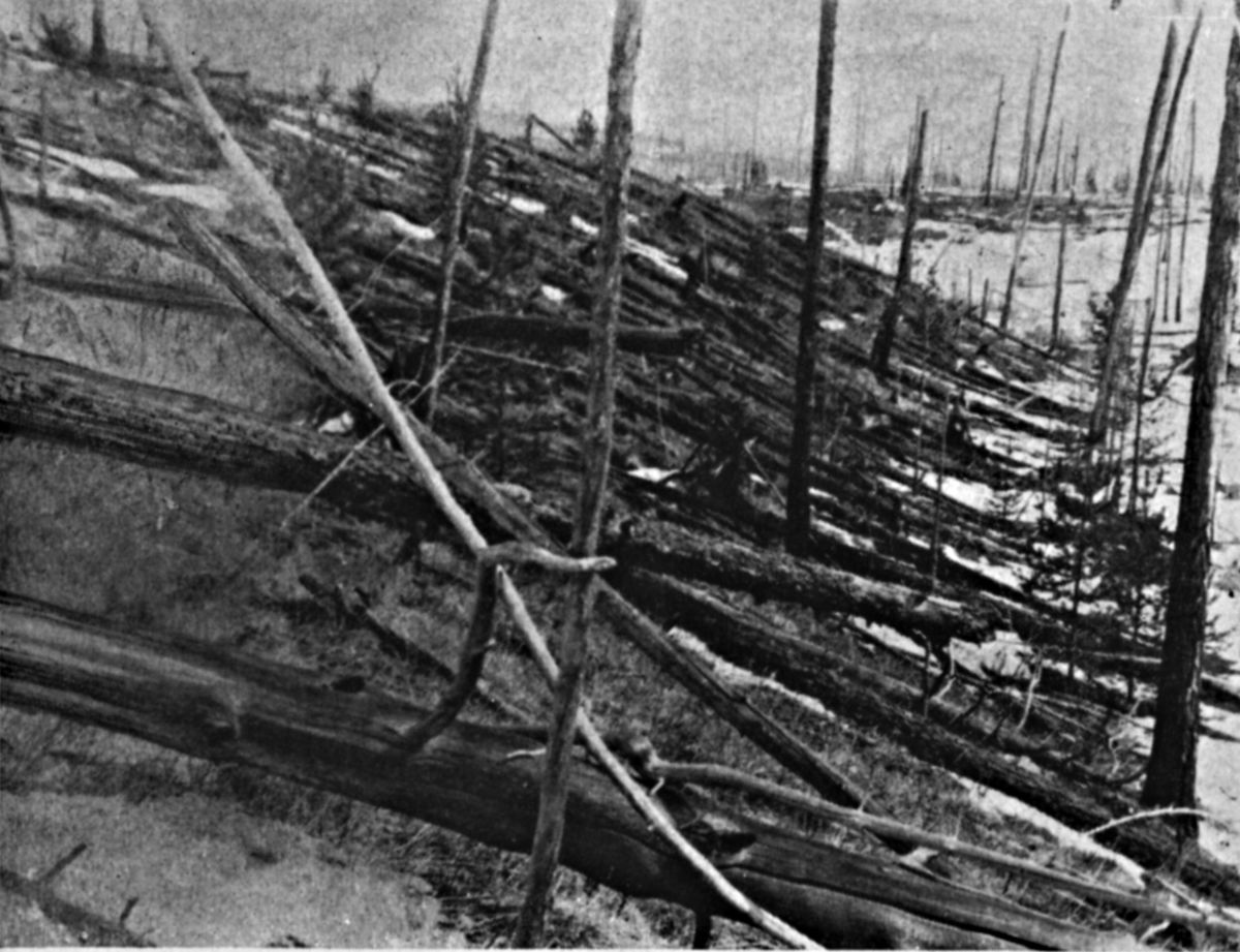 Trees were knocked down and burned over hundreds of square km by the Tunguska meteoroid impact. This image was taken in May 1929 during an expedition to the region led by Leonid Kulik.
