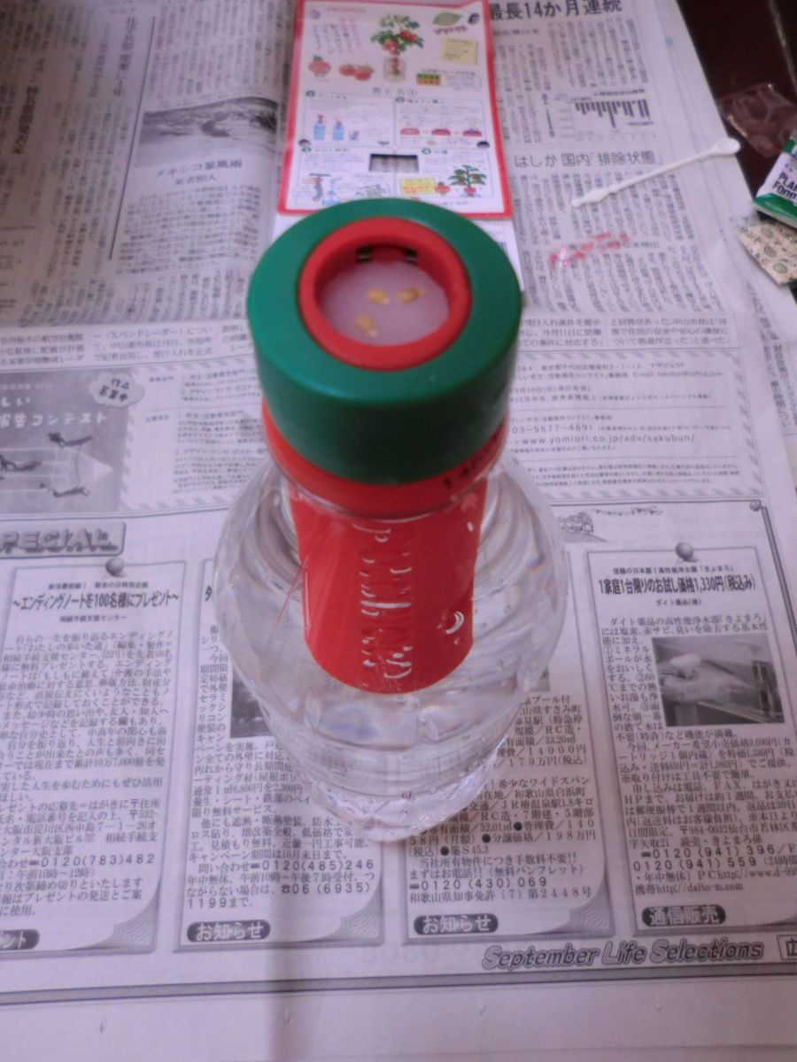 Fill your bottle with water, screw on the Petomato, put 2-3 tomato seeds on top