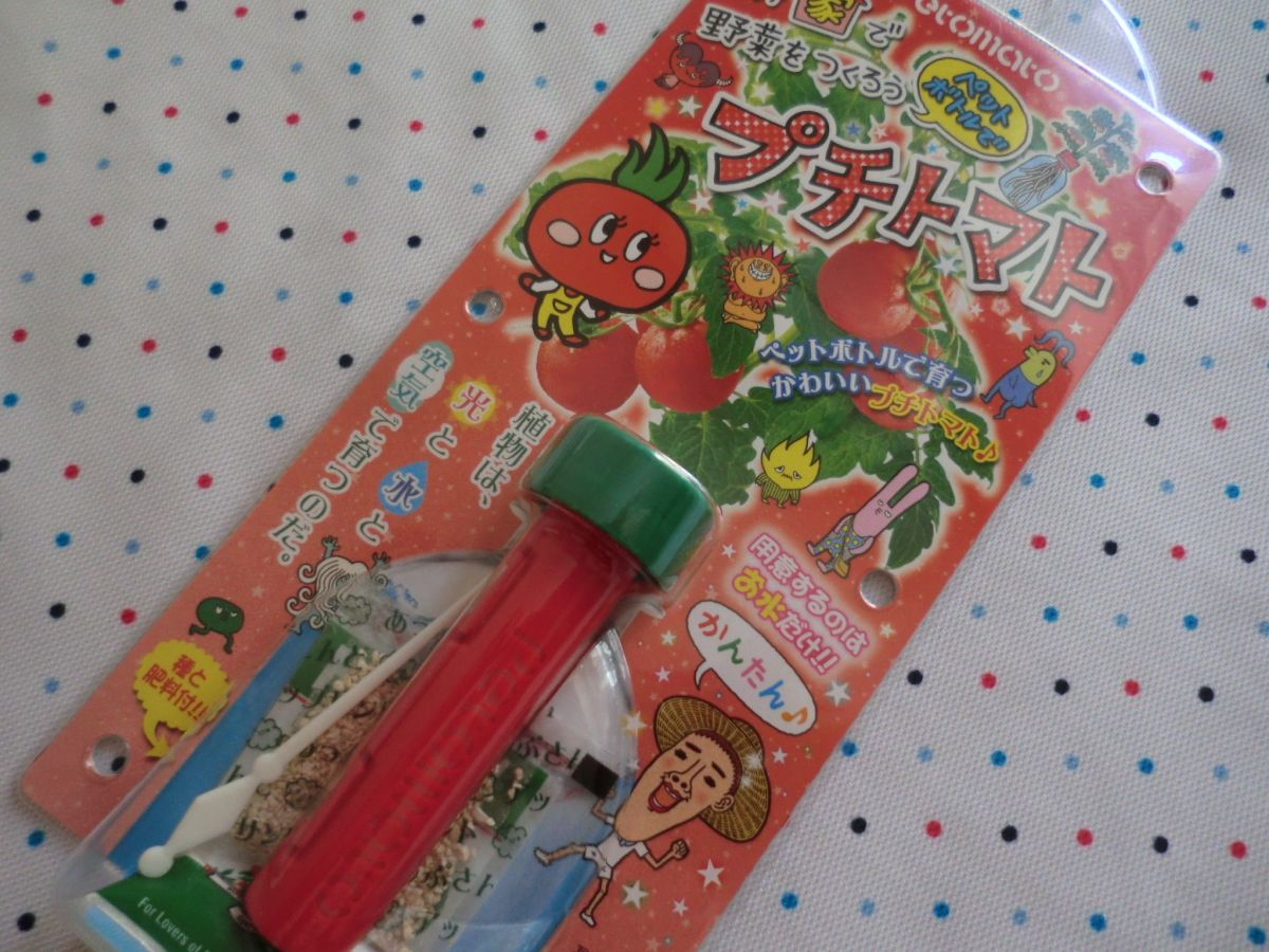 This is the front of the Petomato. I live in Japan so it's the Japanese version. You'll get the Western version