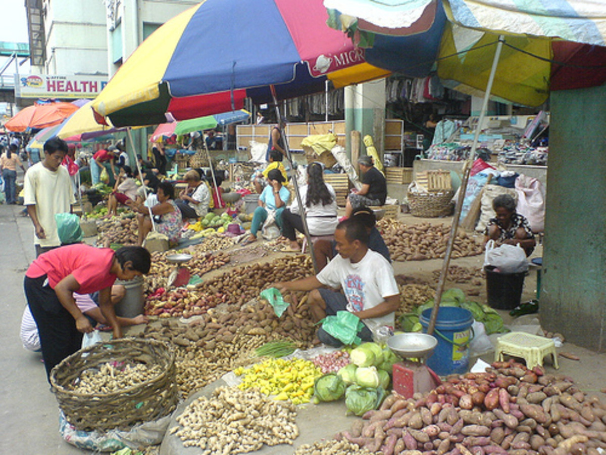 What root crops are grown in the Philippines?