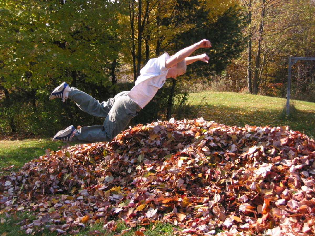 activities-with-fall-leaves