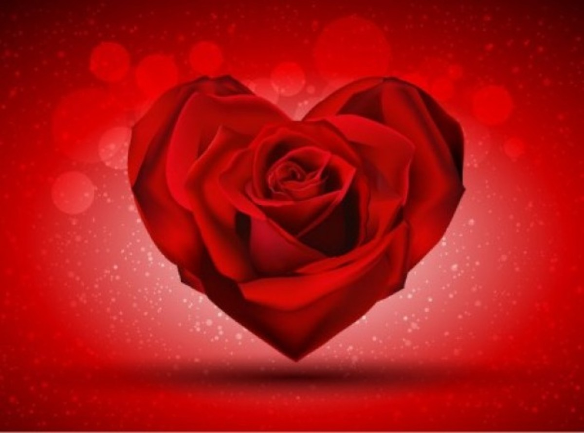 Rose Heart Picture