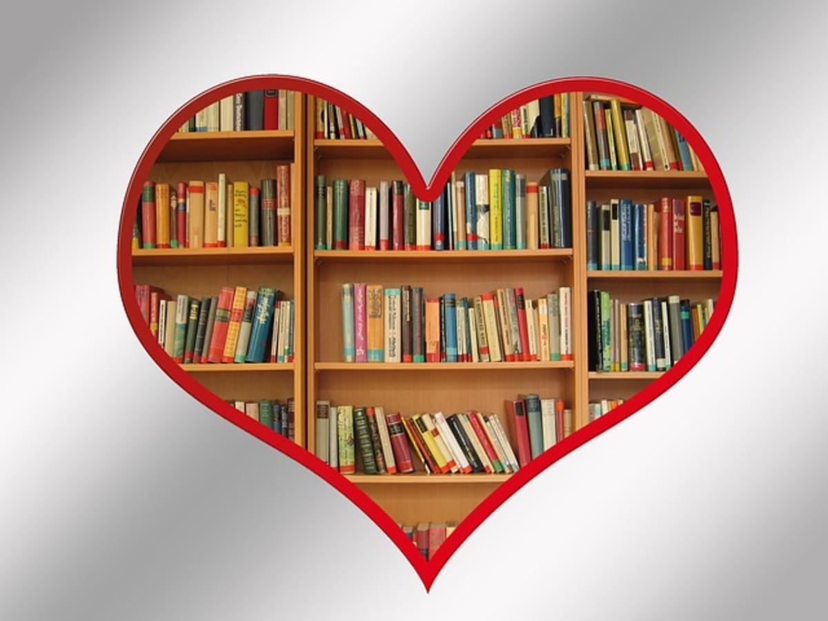 Bookshelves Inside Heart Pic