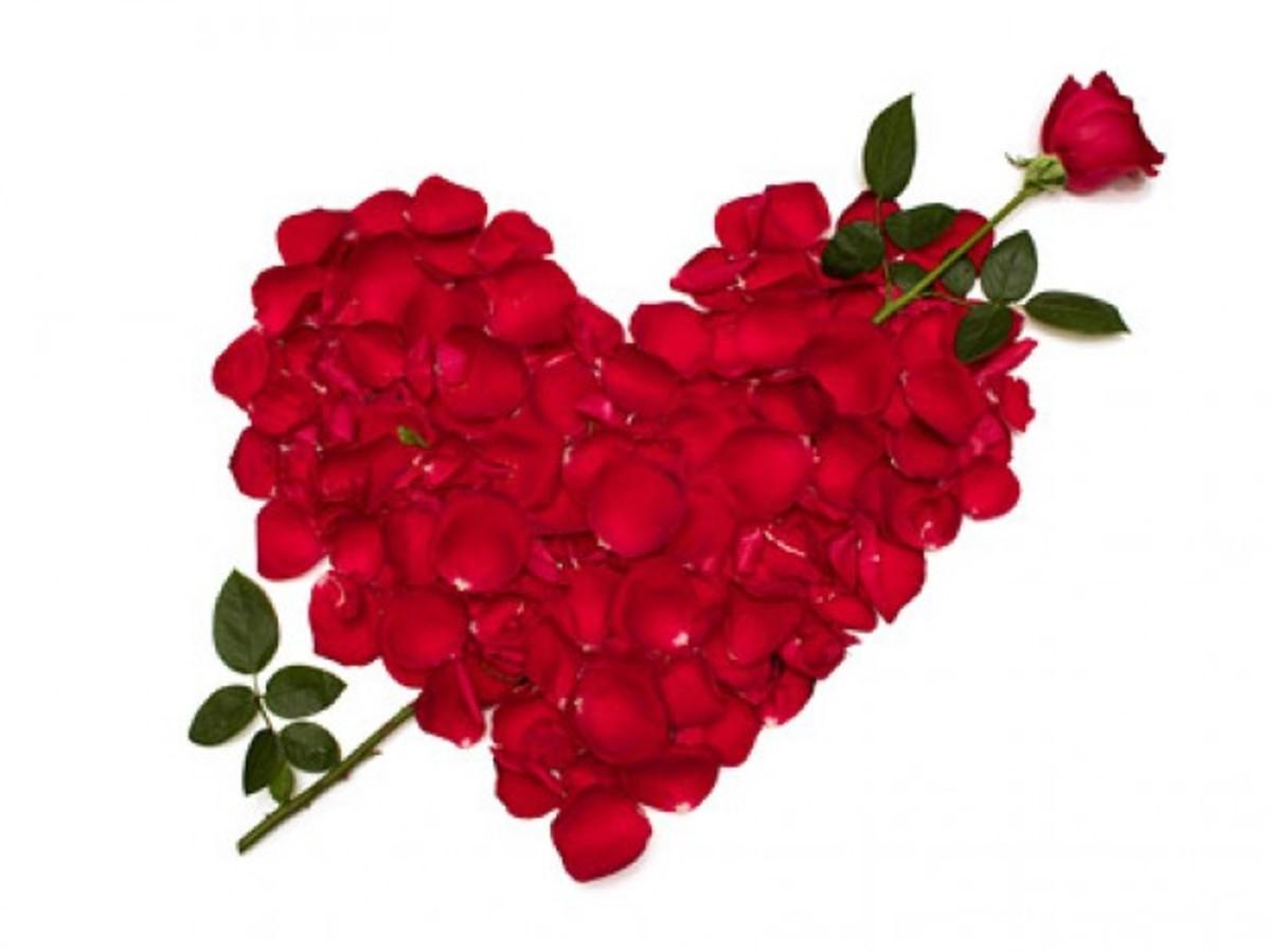Rose Petal Heart With Arrow Photo