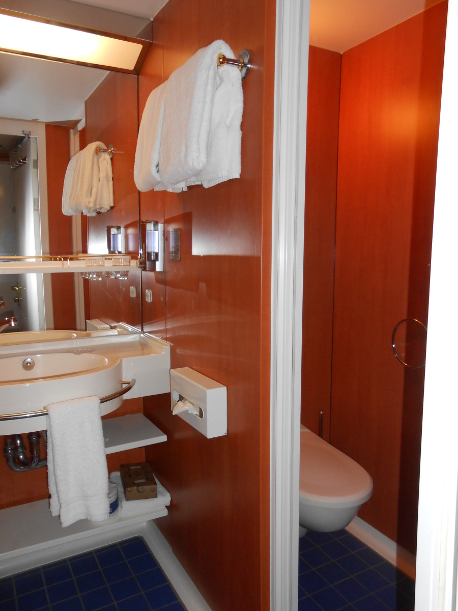 The mini-suite bathroom