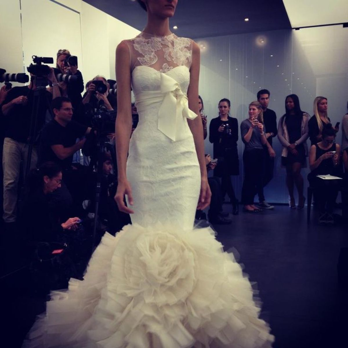 Mermaid wedding dress for Fall 2013 from NYC Bridal Fashion Week made by Vera Wang