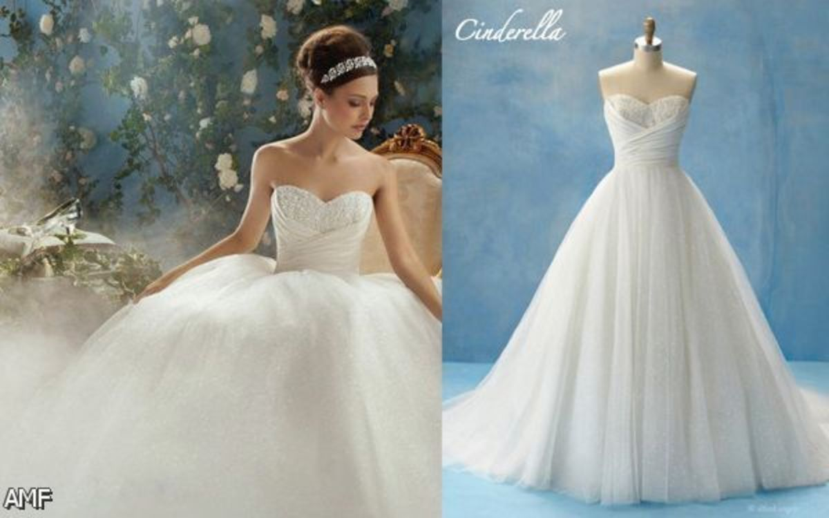 Stunning Disney Cinderella dress!