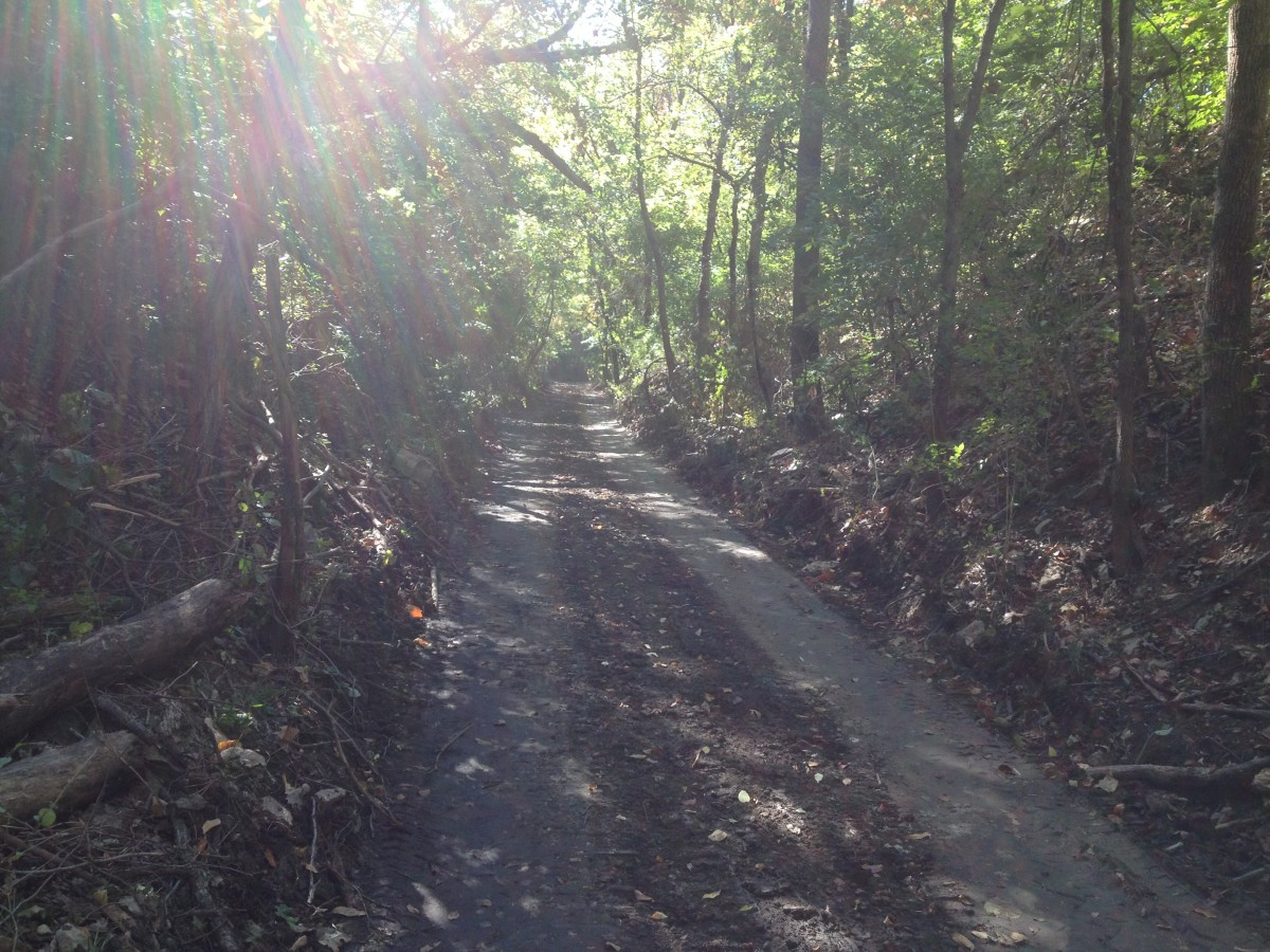 Original Road Bed being improved/new trail construction