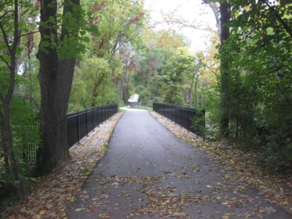 Line Creek Trail Bridge, nice, pretty.