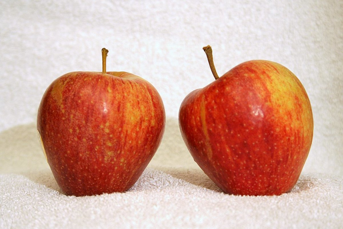 cameo red apples