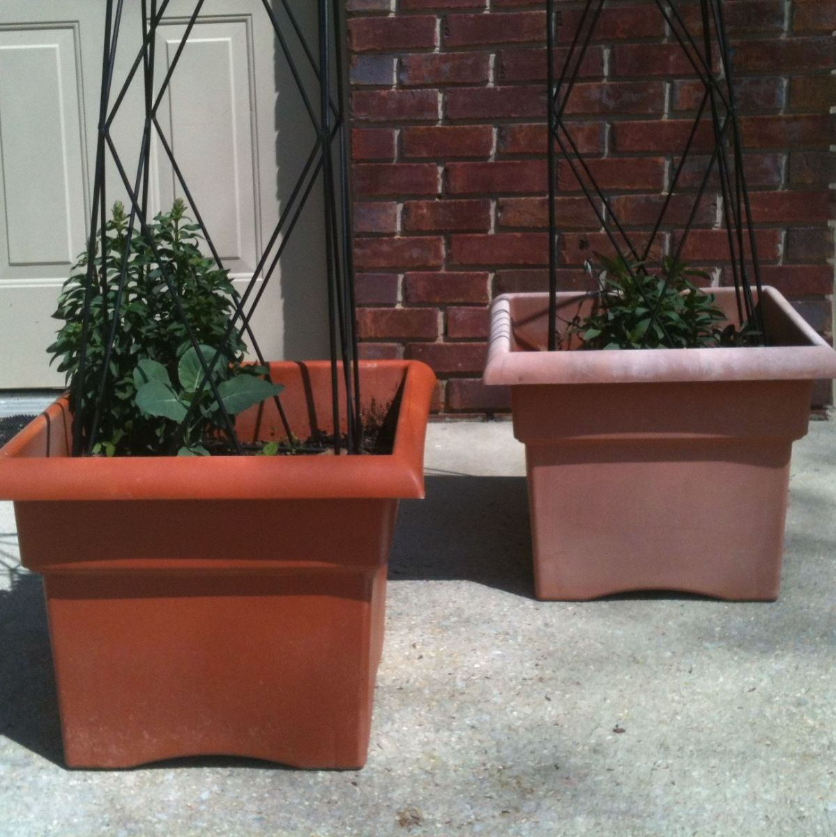 The before (right) and after (left) of my painting project for these old, faded plastic planters. Spray paint to the rescue!
