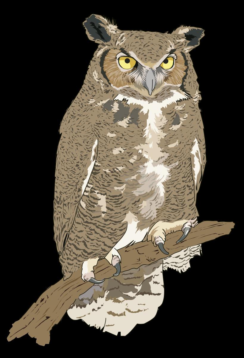 Eagle owl clip art