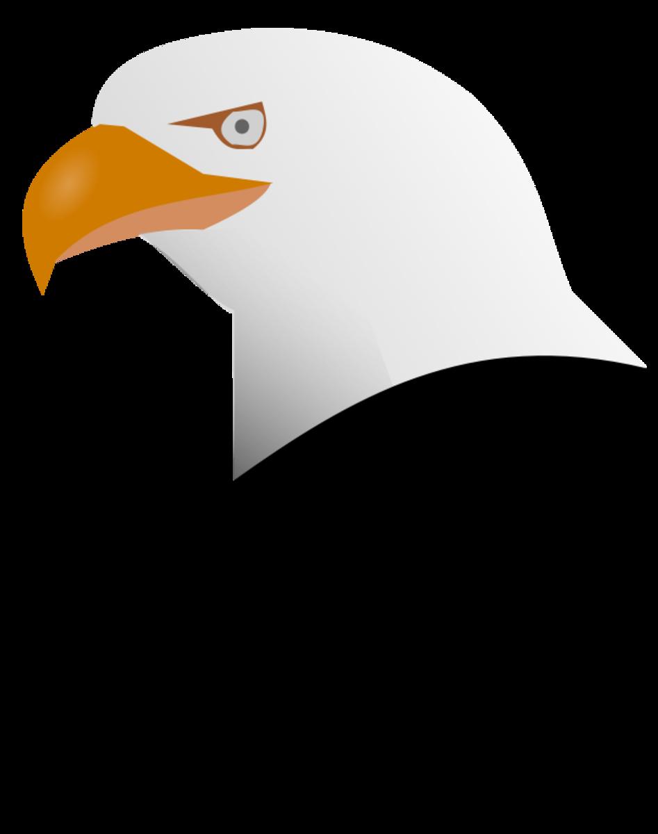Colored Eagle Clip Art