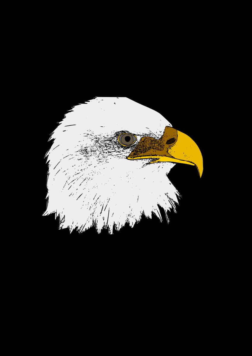 Eagle Head Clip Art