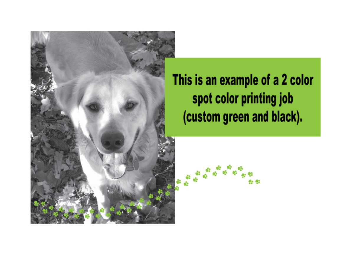 2 color spot color printing example.