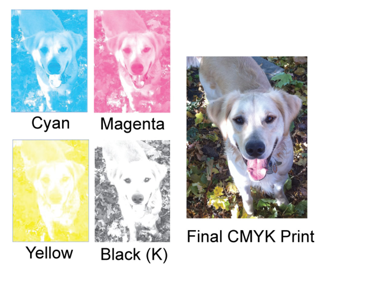 Layers of CMYK ink dots in 4 color process printing combine together to create photo images containing almost every imaginable color!