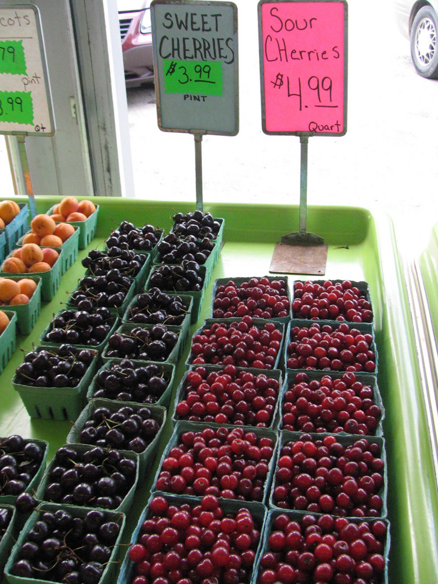Sour cherries @ the marketplace.