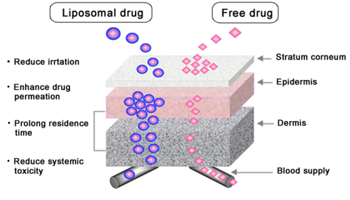 Difference between free drug and liposomal drug