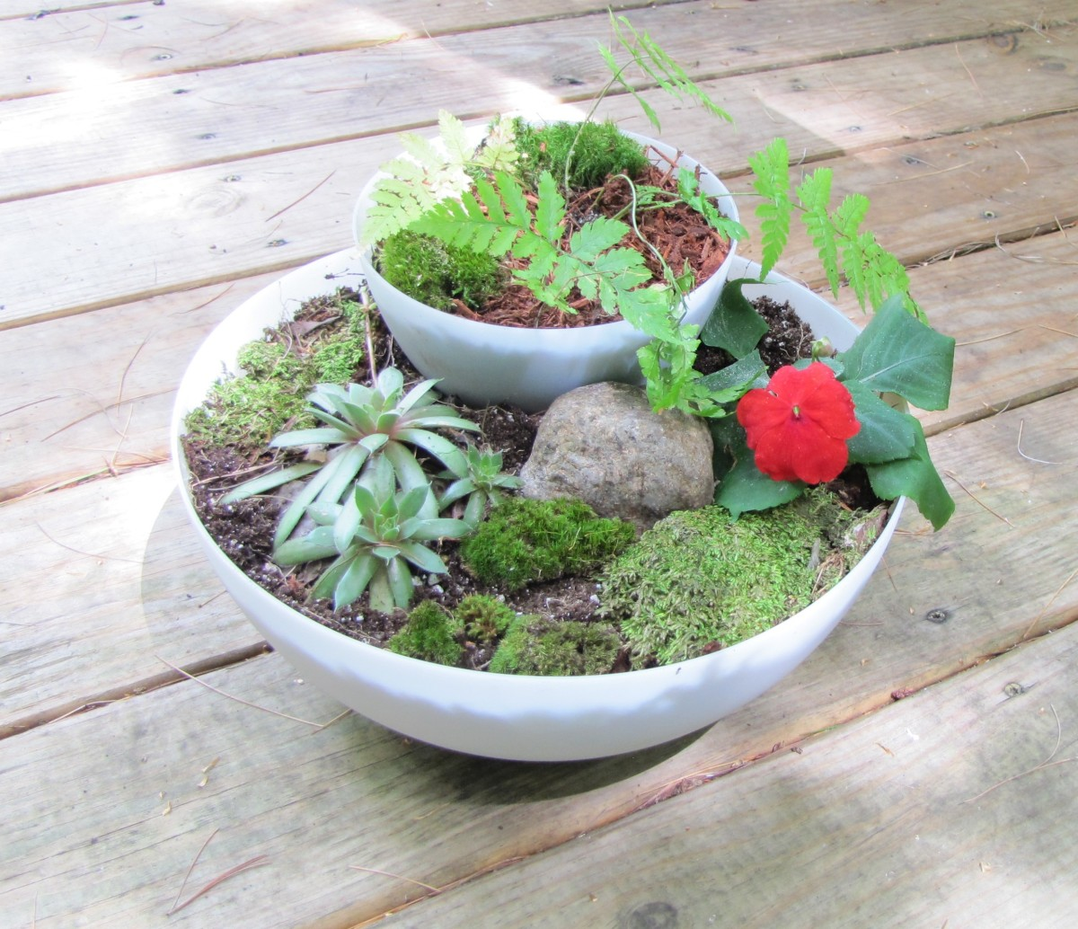 Here's the finished fairy garden. I added a stone, some hen-and-chicks and some moss to the lower section.