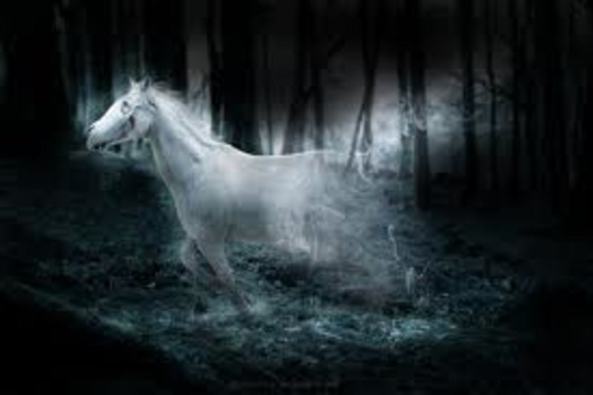 Does a ghostly horse still fly about the night sky hoping to win a race it has already lost?