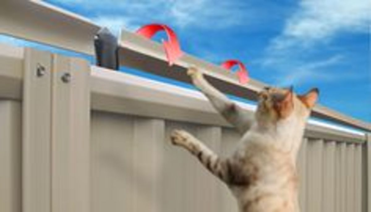 Cat Fence Rollers make it impossible for cat to get a hand-hold