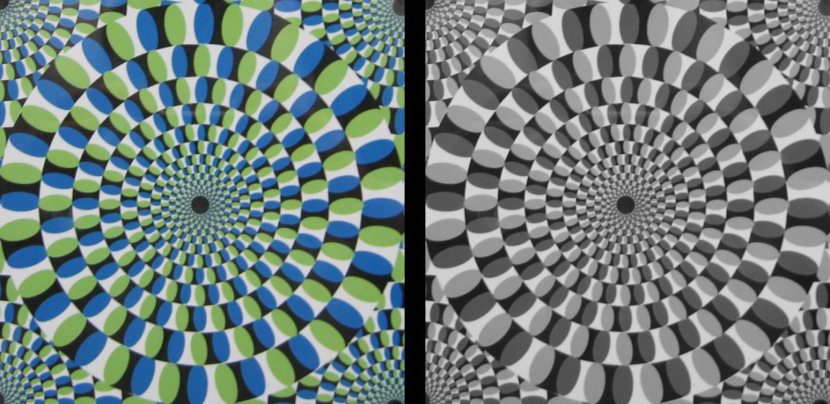 Colour versus grey-scale circle optical illusion