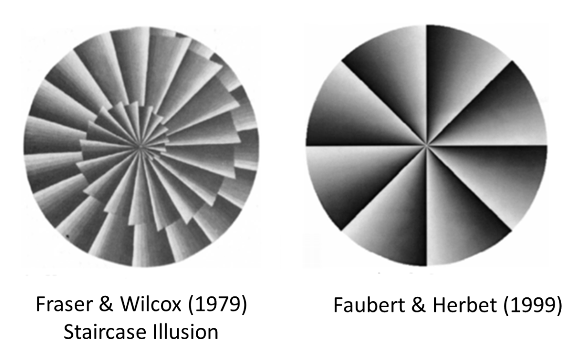 Faubert & Herbert (1999) coined the term 'peripheral drift' to describe these types of visual illusions.