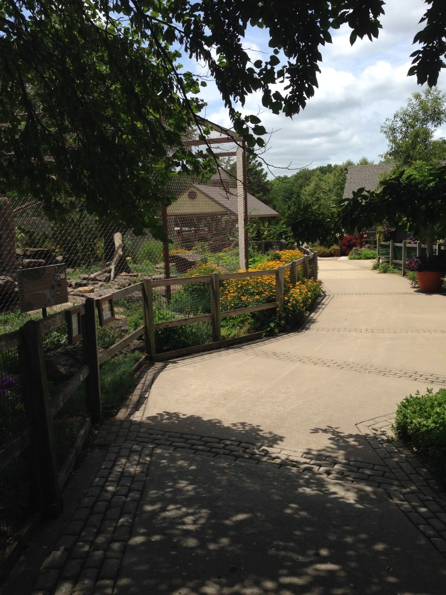 Tranquil walkway through the David Traylor Zoo and Botanical Garden