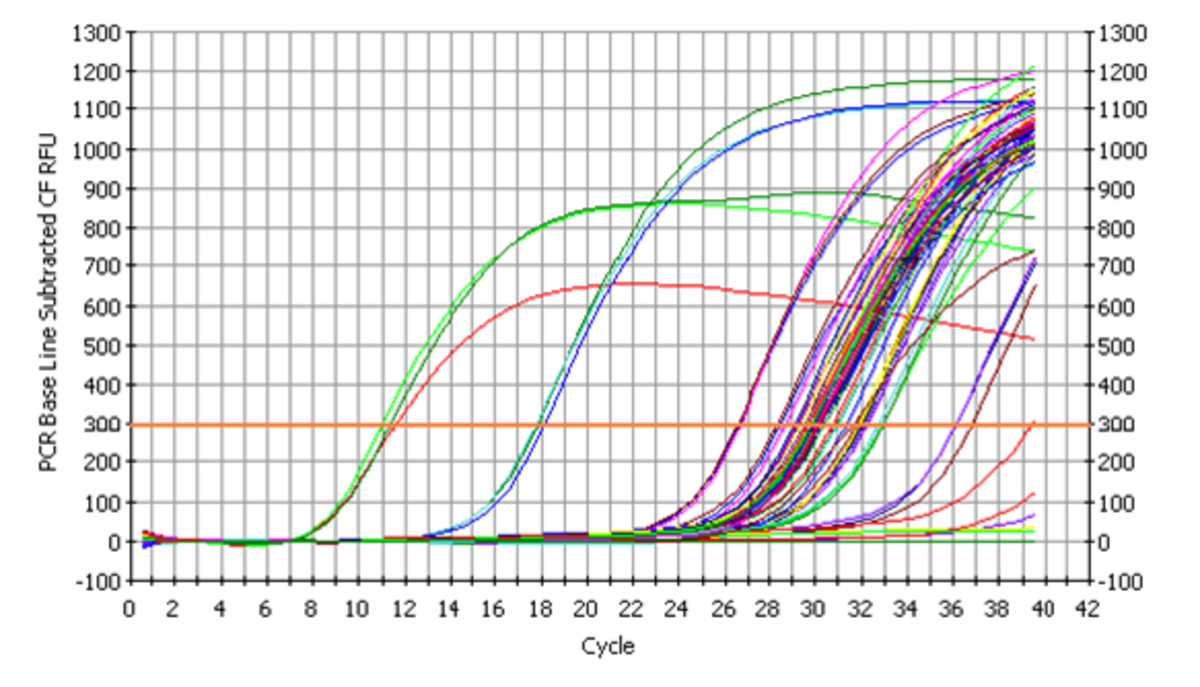 rt-PCR amplification curves of DNA