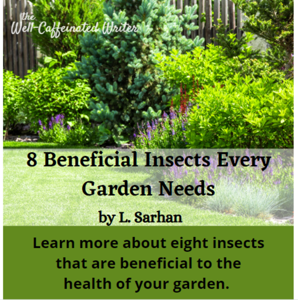 This article gives a list of eight insects that are beneficial to gardens, including what makes them beneficial and how to attract them.