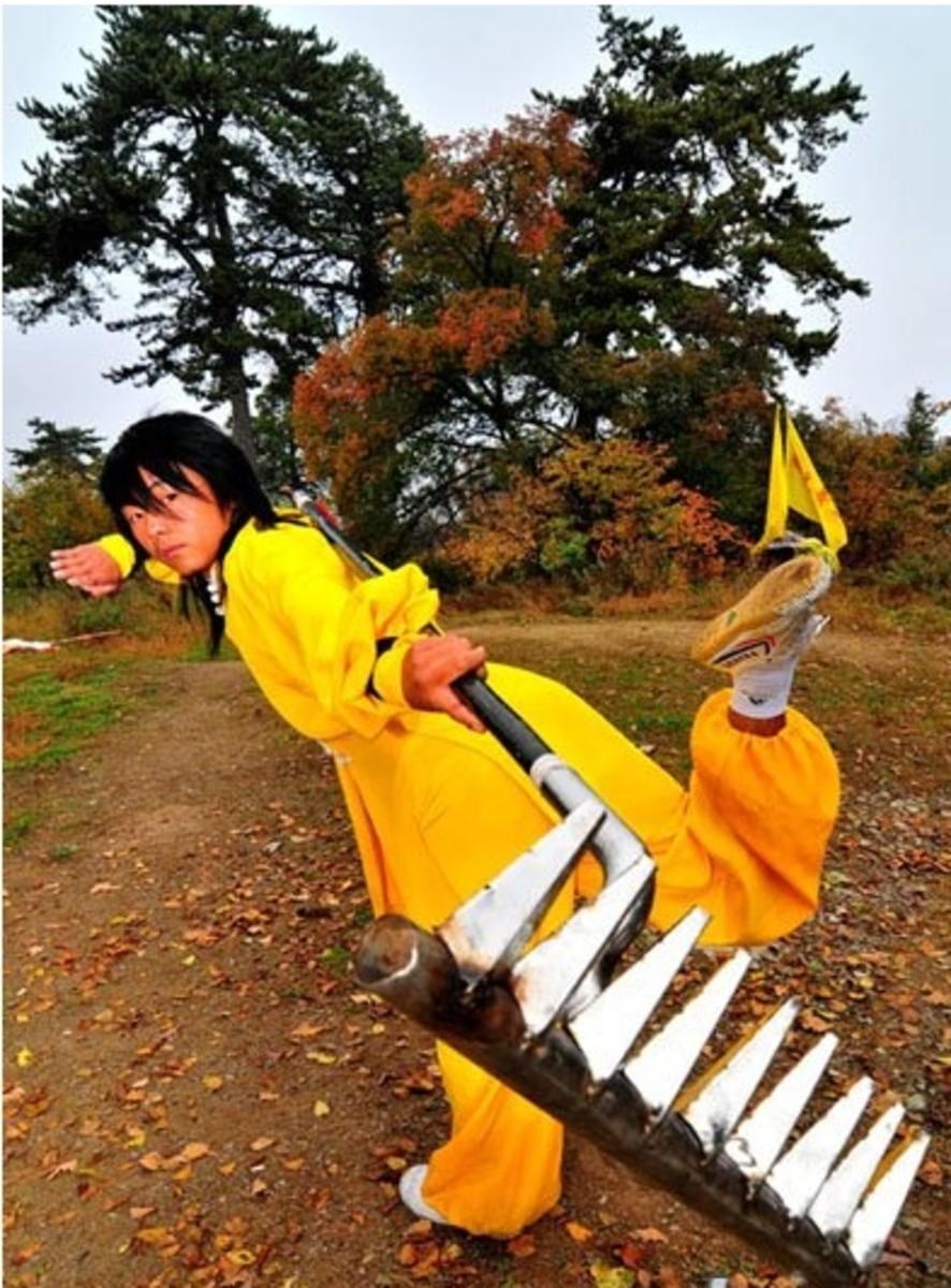 Rakes in martial arts