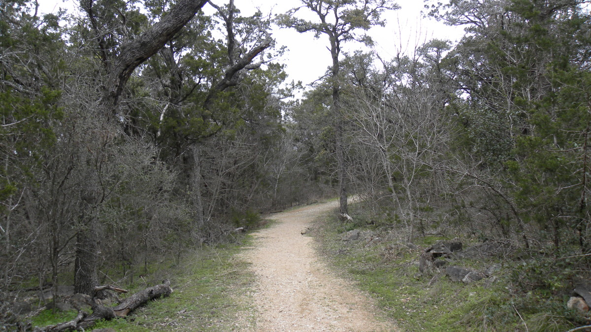 Latta Branch Greenbelt  Austin TX Walking, Running, Biking trails
