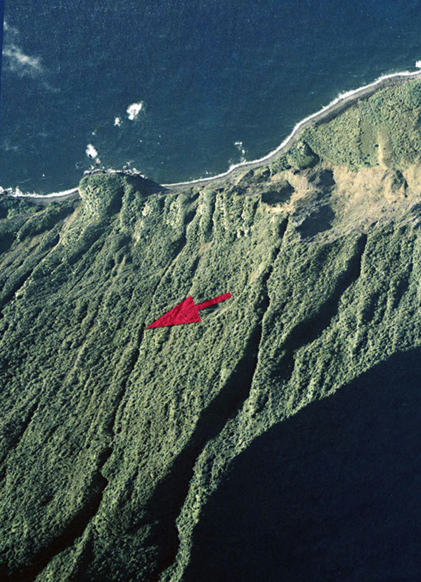 Pu'uka'oku Falls is seen here pointed out by the large red arrow marker. The falls are very narrow and are hidden nearly completely by the brush on the side of the seaside cliff.
