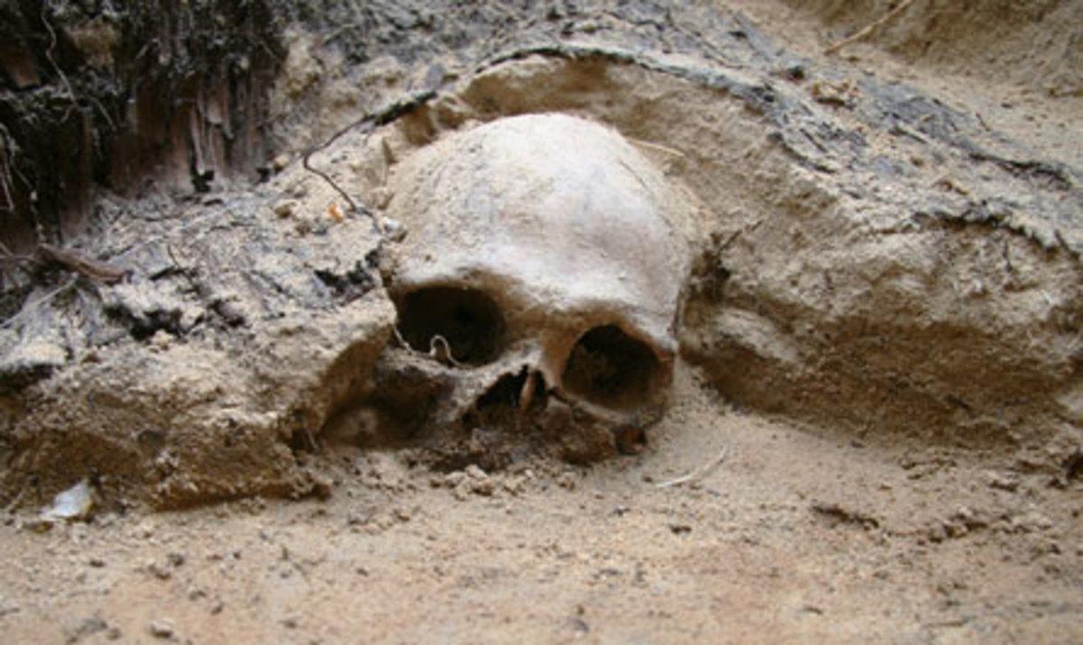Colorado Lost Treasure La Caverna Del Oro The Cave Of