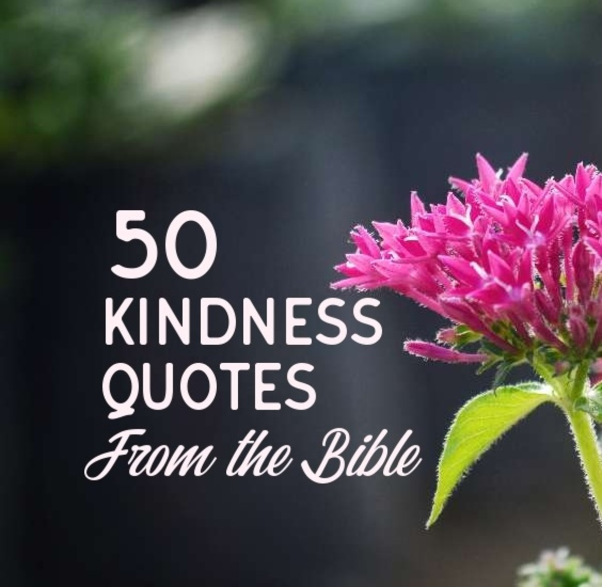 50 Kindness Quotes from the Holy Bible