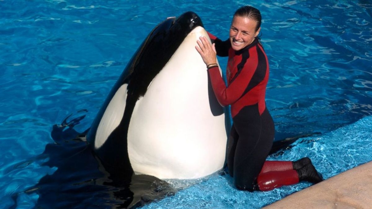 Dawn Brancheau with an orca at Seaworld