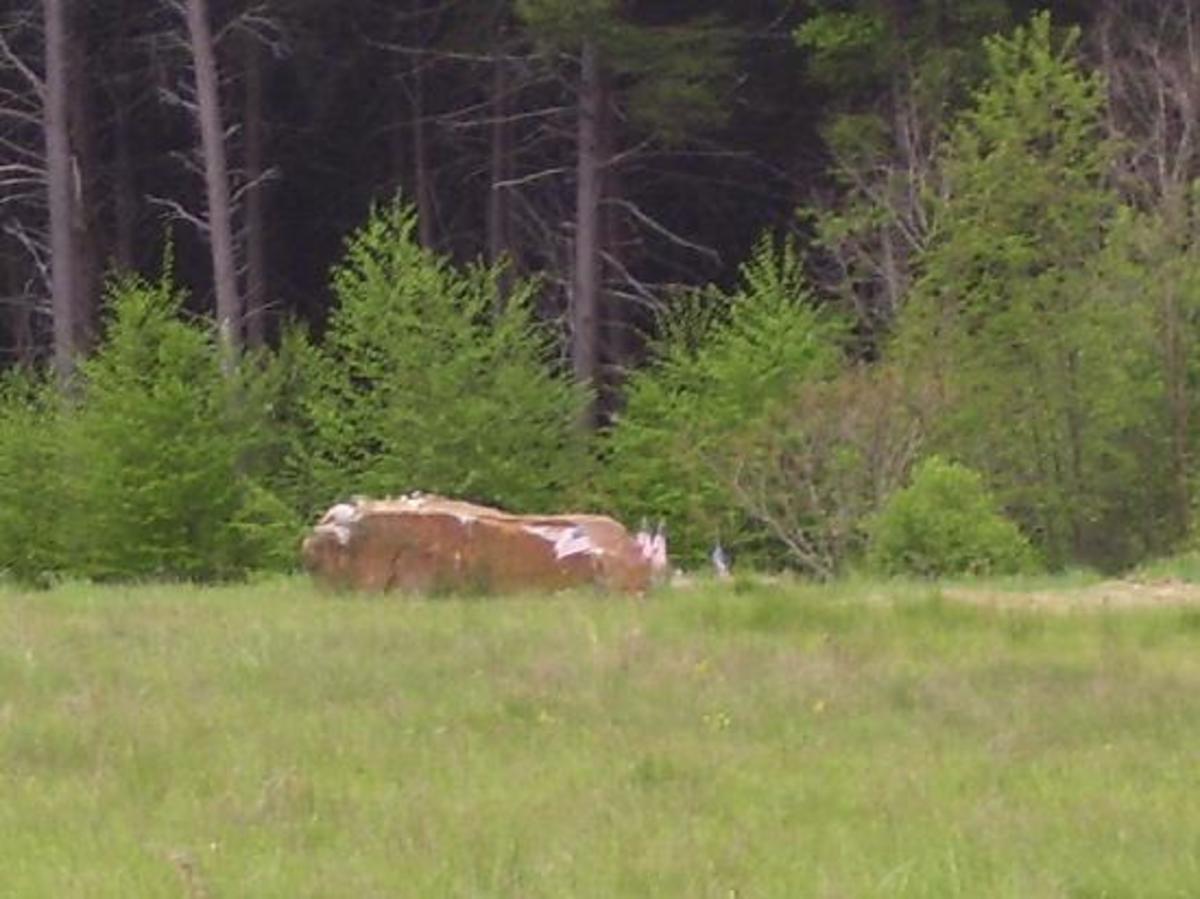 Flight 93 Memorial Crash Site
