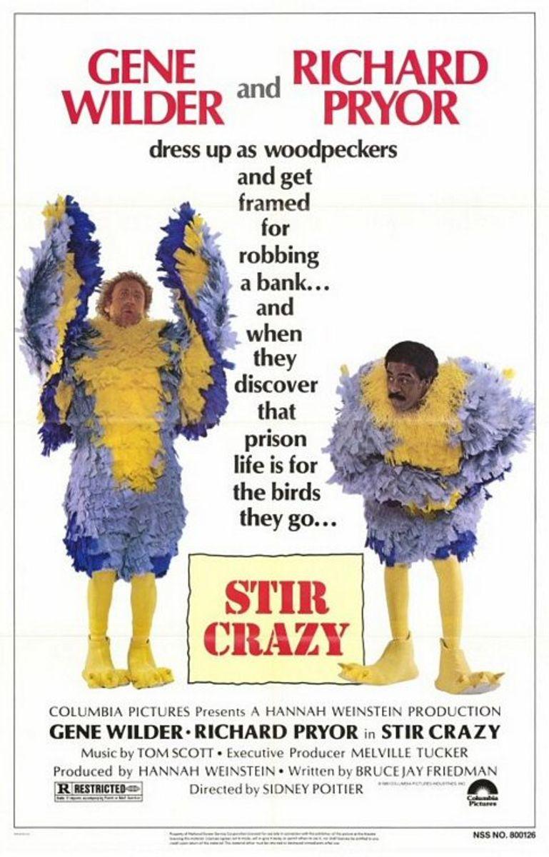 Film Review: Stir Crazy