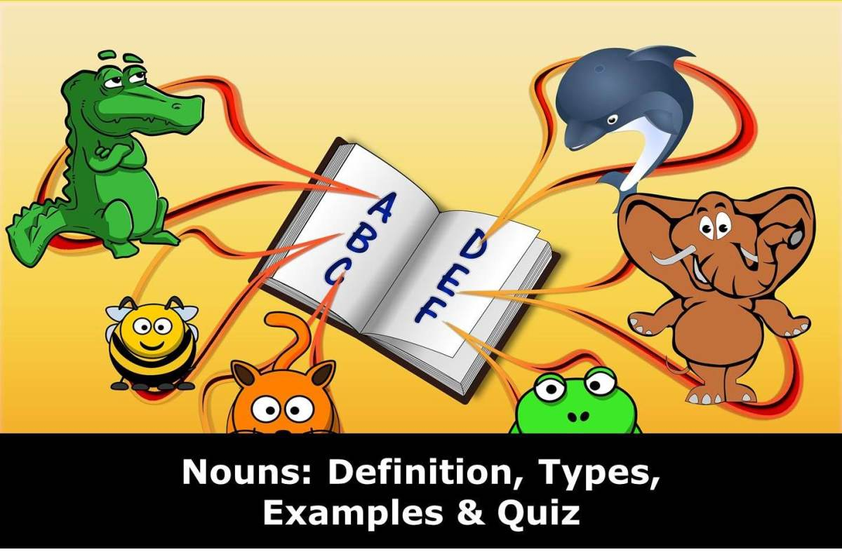 Nouns: Definition, Types and Examples of Nouns