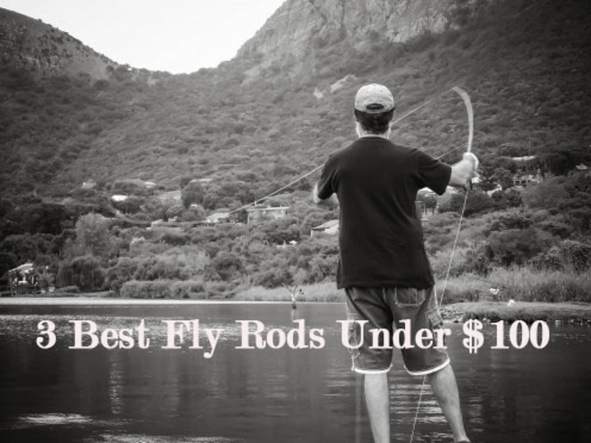 The Best 3 Fly Rods for Sale Under $70--2018 Review