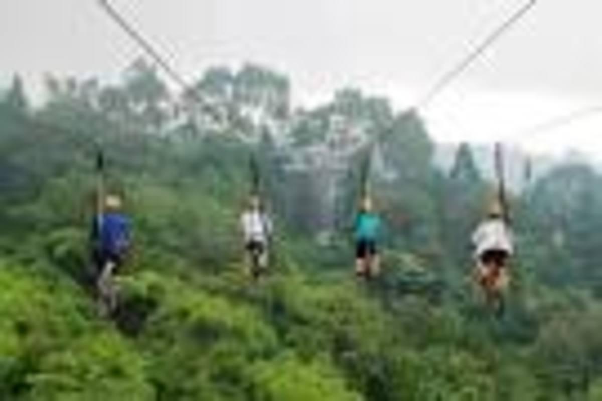 Sky Ride Adventure in Eden Park