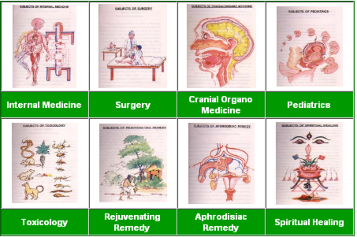 Ayurveda eight components/branches