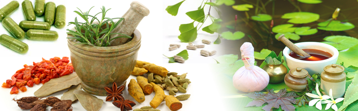 Different herbs used in Ayurveda