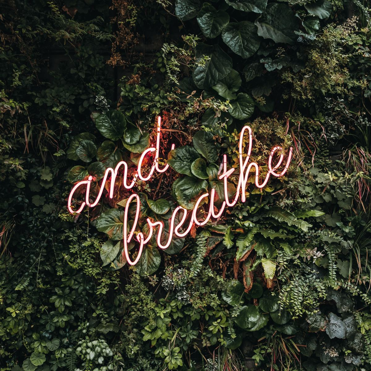 Remember to breathe especially during hypnosis or meditation.