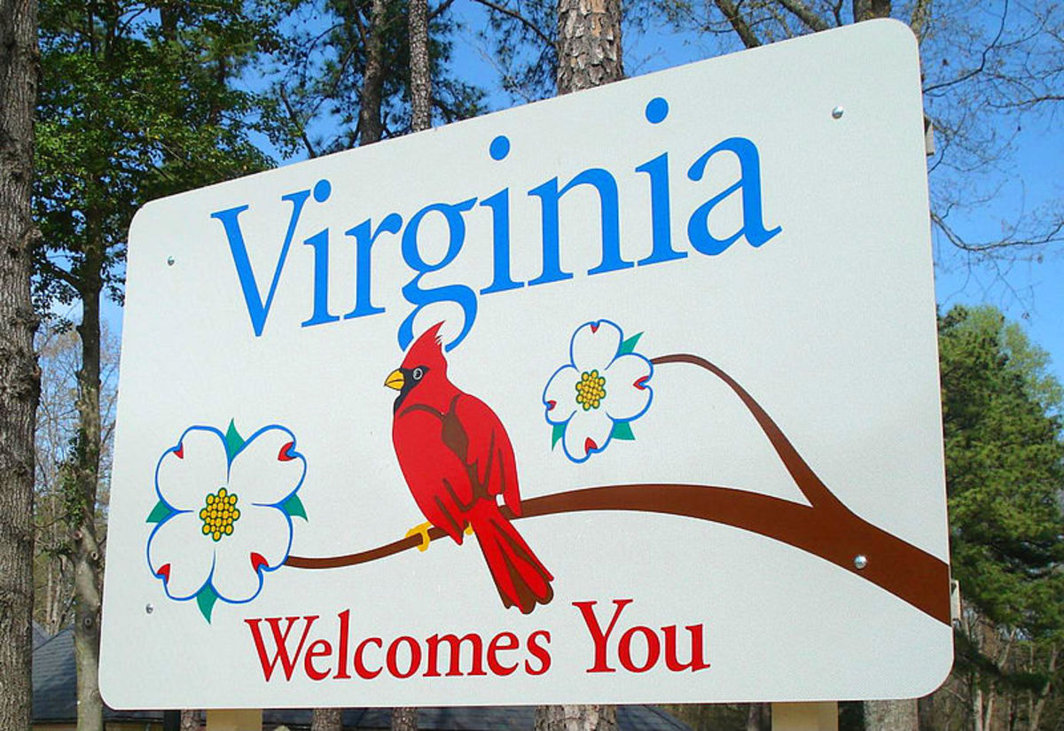 This sign welcome people to Virginia. It includes the cardinal which is the state bird, and the dogwood which is the state tree and flower.
