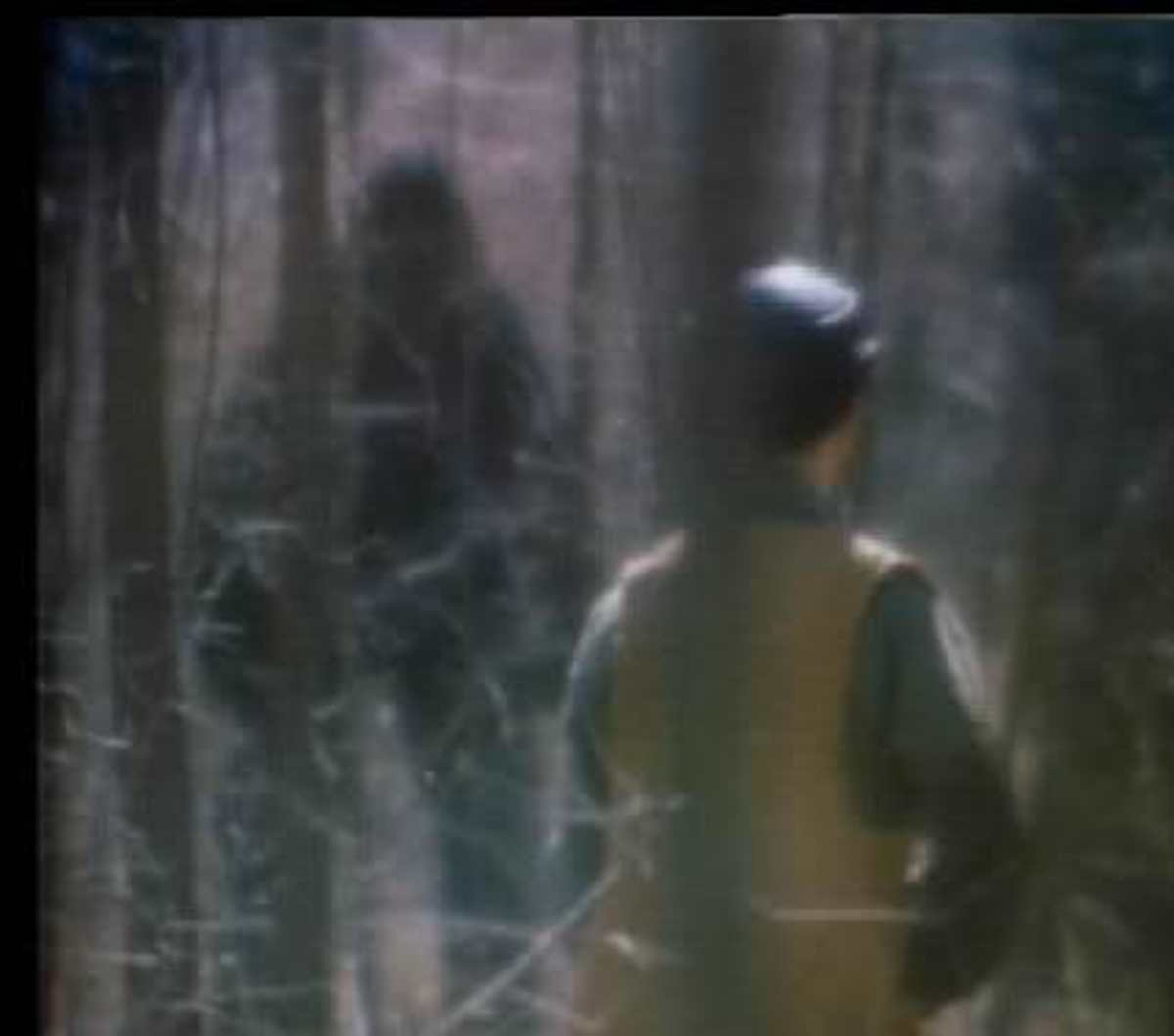 Still from the movie Legend of Boggy Creek showing the creature stalking a young boy out hunting