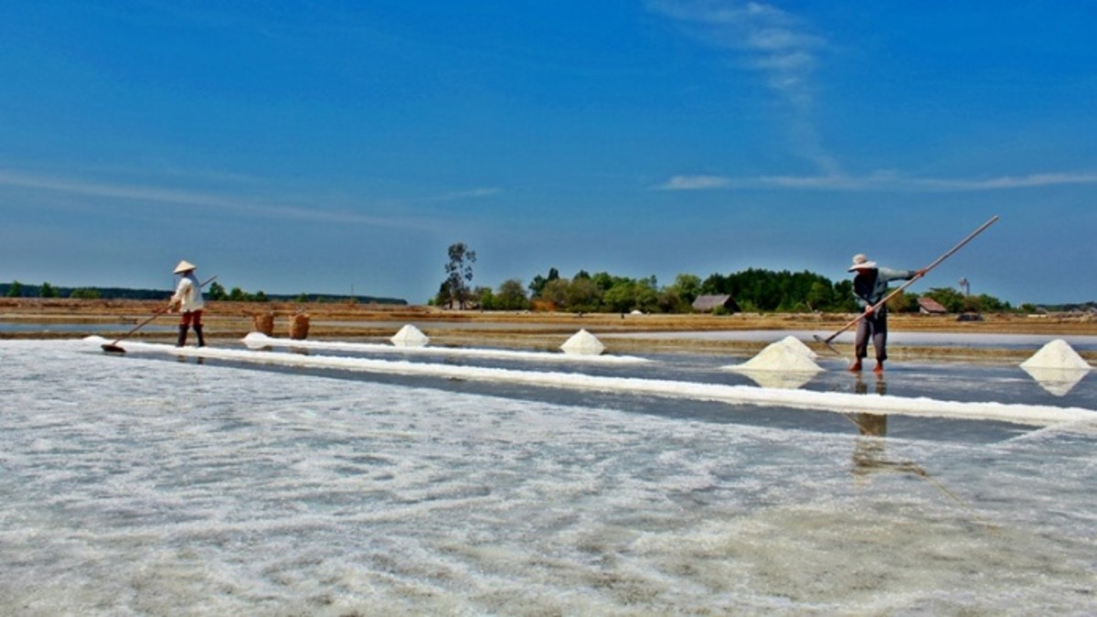 Salt fields paints the landscape in crystal white